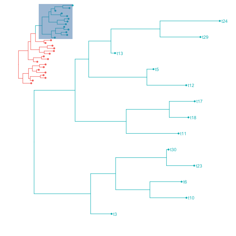 Annotate a phylogenetic tree with insets