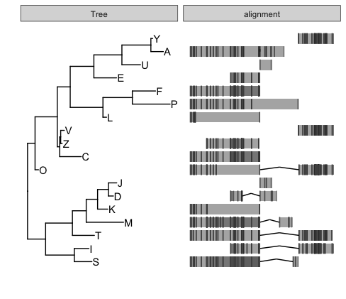 Align genomic features with phylogenetic tree