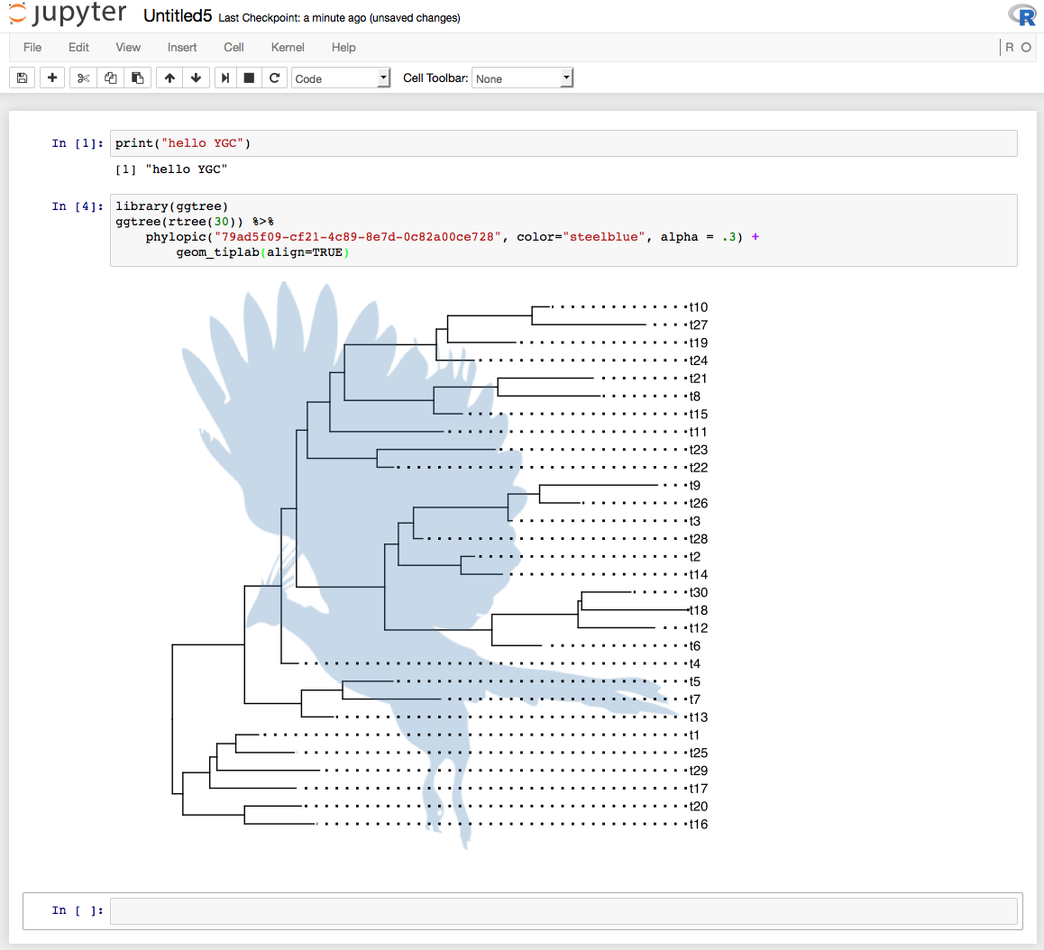 Language In 45 And 47 Stella Street: R Kernel In Jupyter Notebook 3